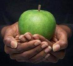 Moral story: Apple from God!